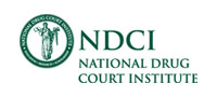 National Drug Court Institute